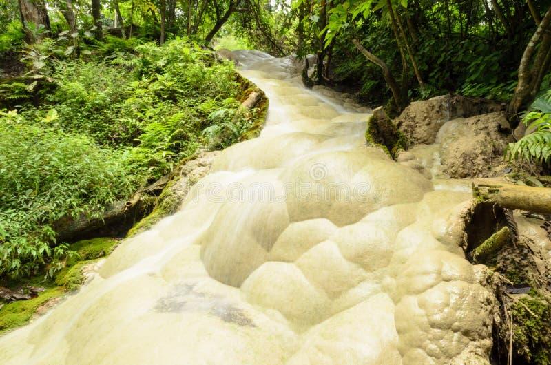 Download Водопады в лесе весной стоковое изображение. изображение насчитывающей горяче - 41655901