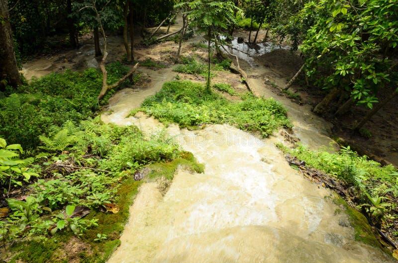 Download Водопады в лесе весной стоковое изображение. изображение насчитывающей пуща - 41656019