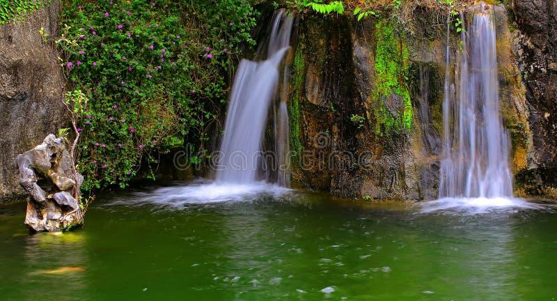 Водопады в тропическом саде стоковое изображение rf