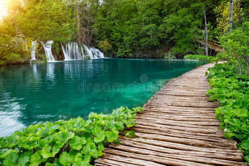 Водопады и тропа в национальном парке Plitvice, Хорватия стоковое фото rf