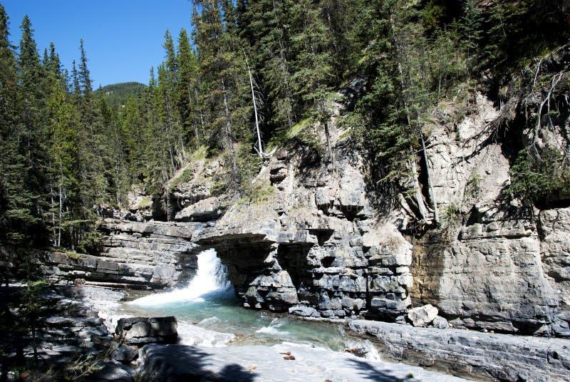Водопады на каньоне Banff Johnston стоковые фото