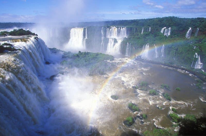 Водопады Iguazu в Parque Nacional Iguazu, Salto Floriano, Бразилии стоковая фотография rf