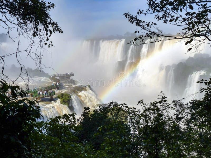 Водопады Iguazu на границе Бразилии и Аргентины стоковое фото rf