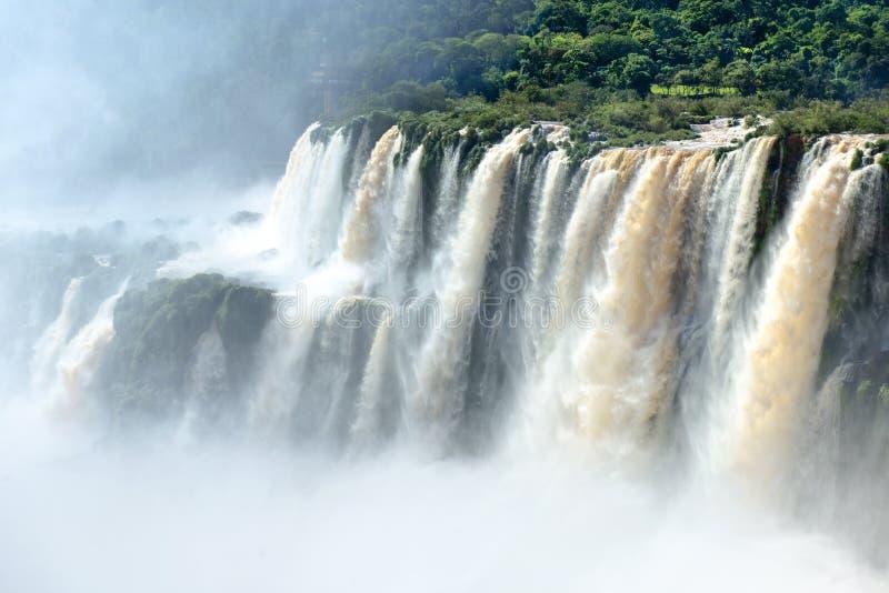 Водопады Iguazu стоковые изображения rf