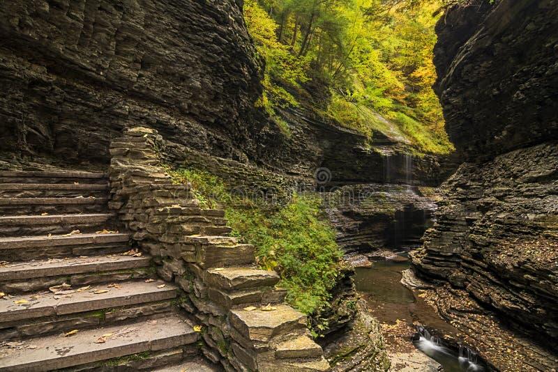 Водопады Watkins Глена стоковая фотография