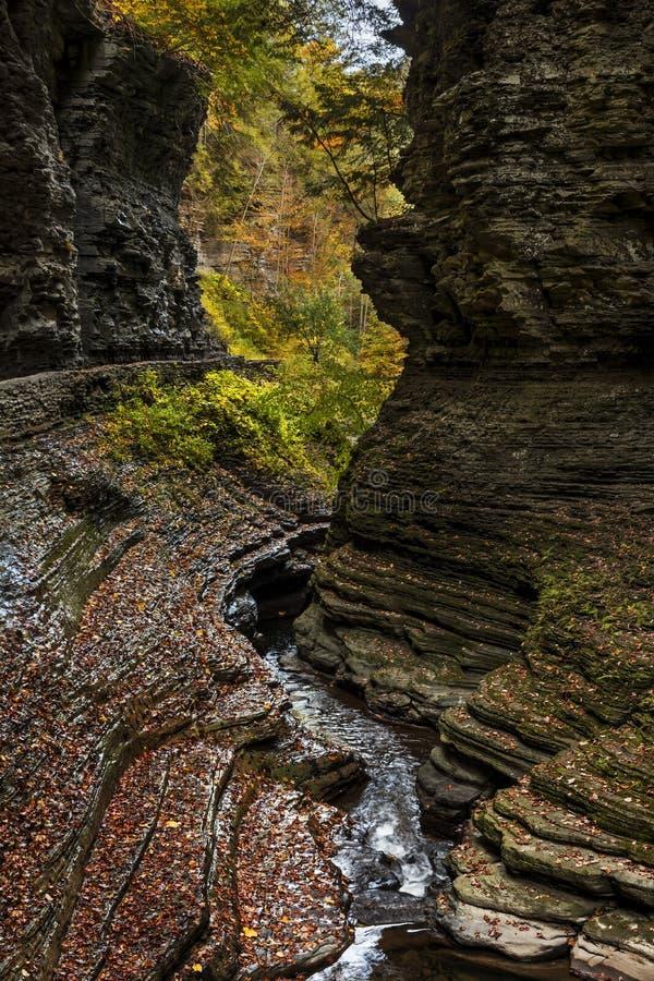 Водопады Watkins Глена стоковая фотография rf