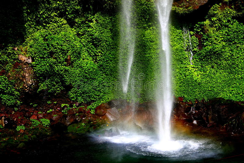 Download Водопад стоковое изображение. изображение насчитывающей излечивать - 41650897