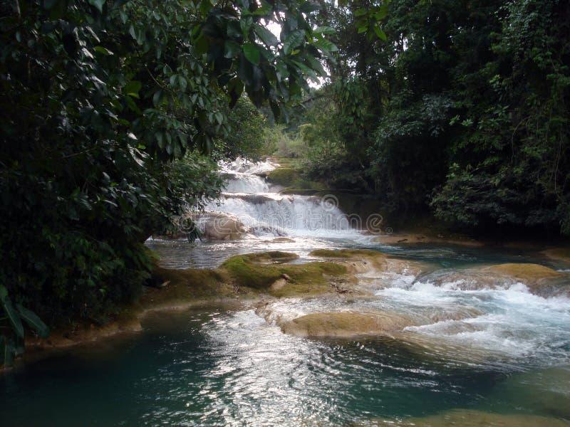 Водопад Azul Aqua, Чьяпась, Мексика стоковые изображения