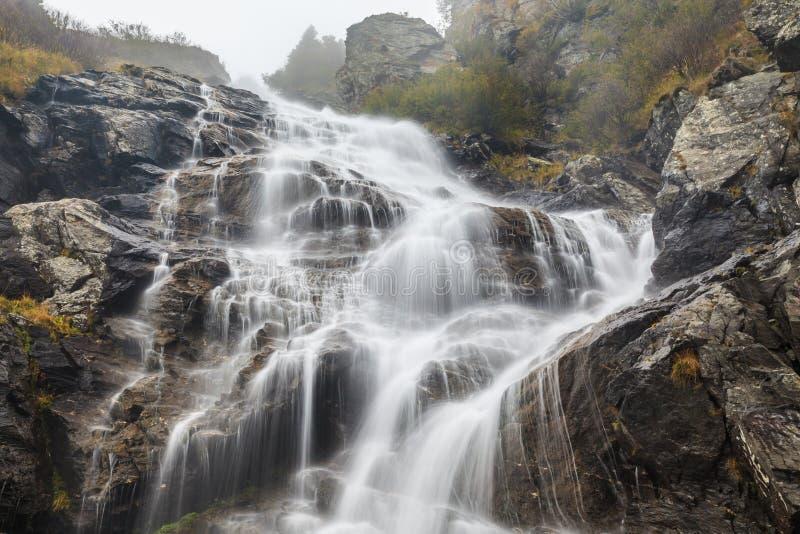 Водопад Capra стоковое изображение rf