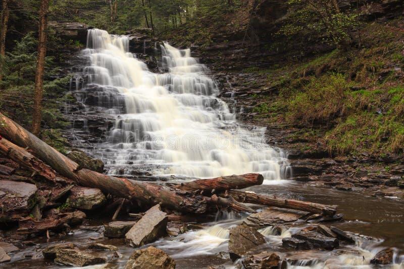 Водопад FL Ricketts, Ricketts Глен Пенсильвания стоковое изображение rf