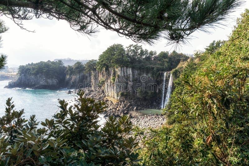 Водопад Jeongbang стоковые фотографии rf