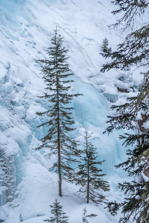 Водопад Johnston стоковое фото rf