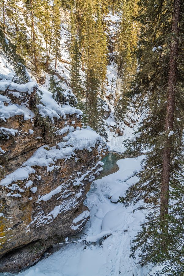 Водопад Johnston стоковые изображения