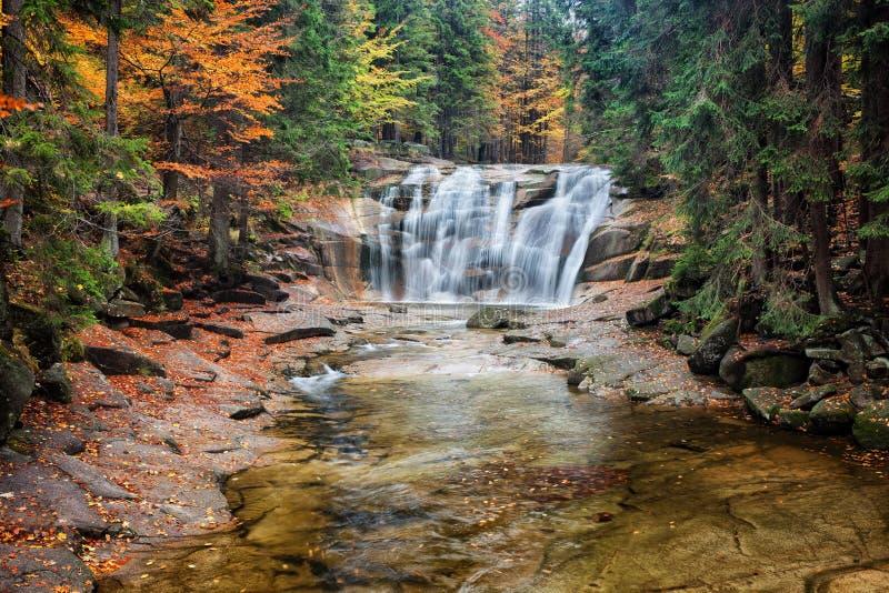 Водопад Mumlava в лесе осени стоковое фото rf