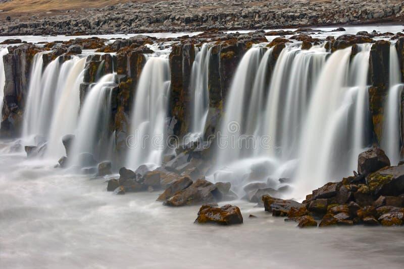 Водопад Selfoss в Исландии стоковая фотография rf