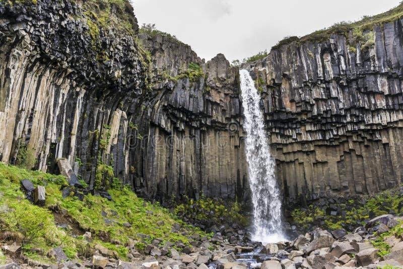 Водопад Svartifoss с столбцами базальта skaftafell национального парка Исландии стоковое фото