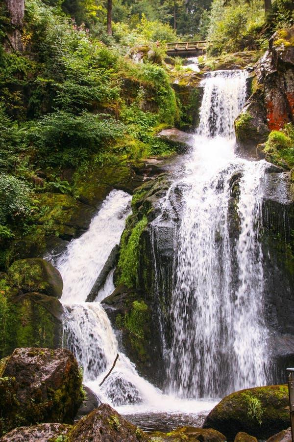 Водопад Triberg в Германии, черном лесе стоковая фотография rf