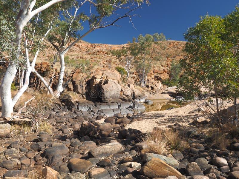 Водопой вдоль прогулки оправы в сухом фунте Ormiston стоковые фотографии rf