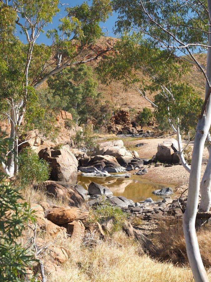 Водопой вдоль прогулки оправы в сухом фунте Ormiston стоковая фотография rf