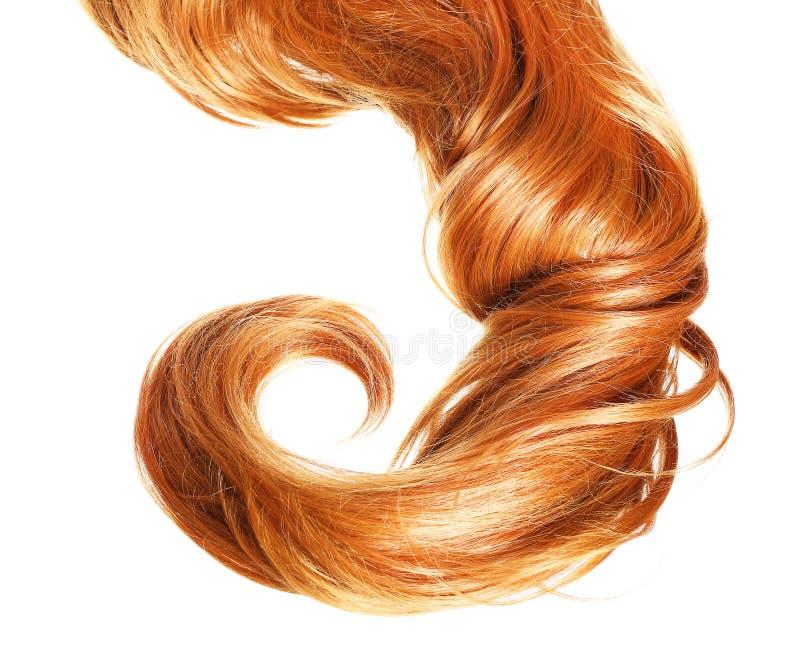 Волосы скручиваемости красные изолированные на белой предпосылке стоковые изображения rf