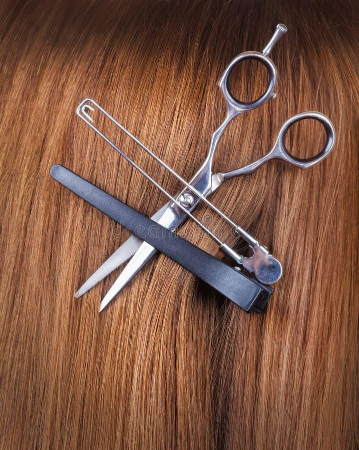 Волосы с ножницами стоковое изображение