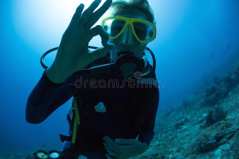 Водолаз акваланга стоковые изображения rf