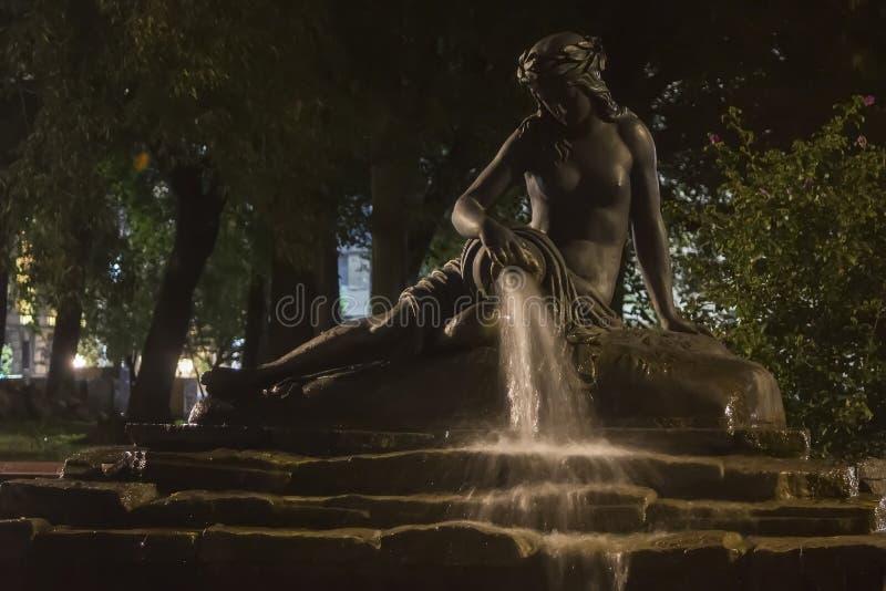 Водолей фонтана на ноче стоковое фото rf