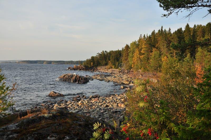Вод-сторона озера Ladoga стоковая фотография rf
