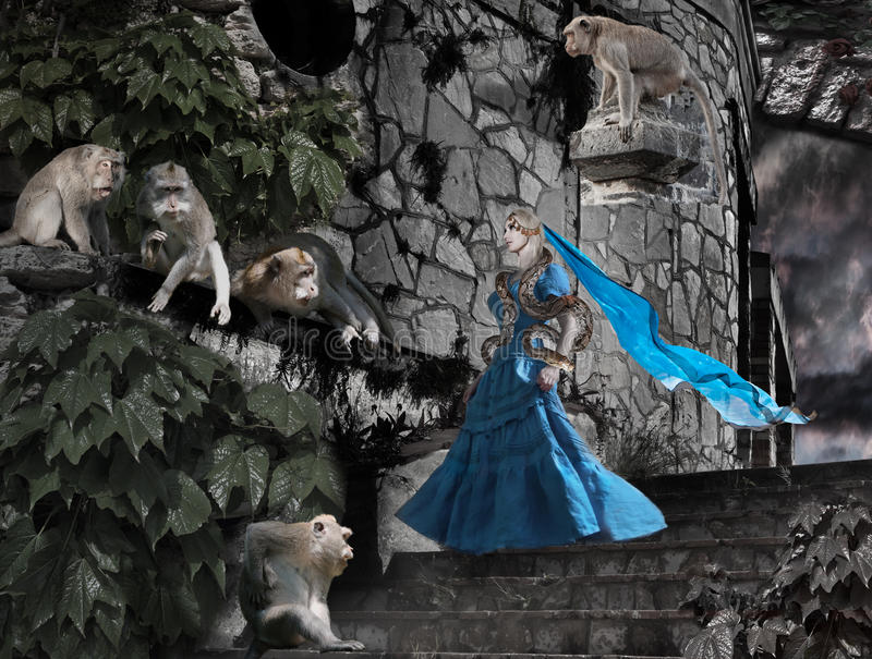 Волшебник с змейкой и обезьянами в руинах виска стоковые фотографии rf