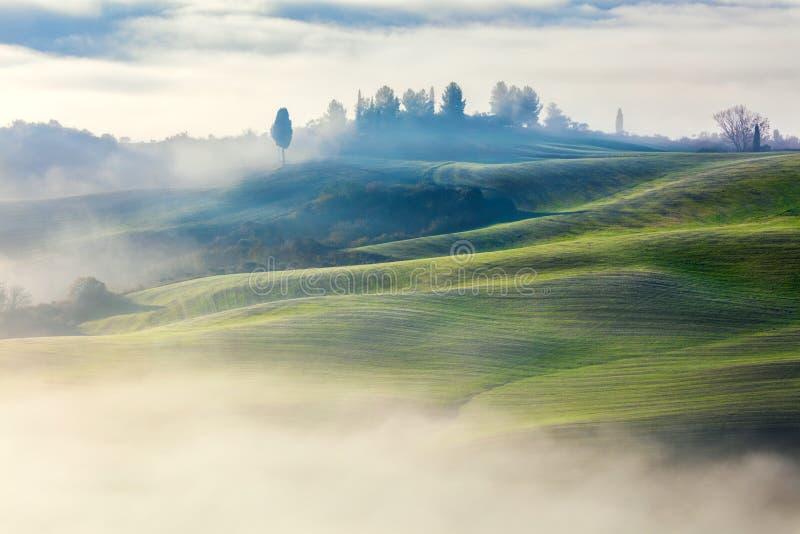Волшебно туманная долина в ландшафте утра стоковое фото