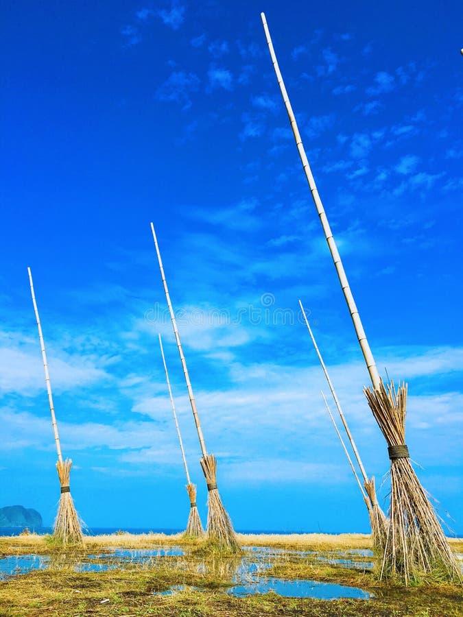 Волшебные broomsticks стоковая фотография rf