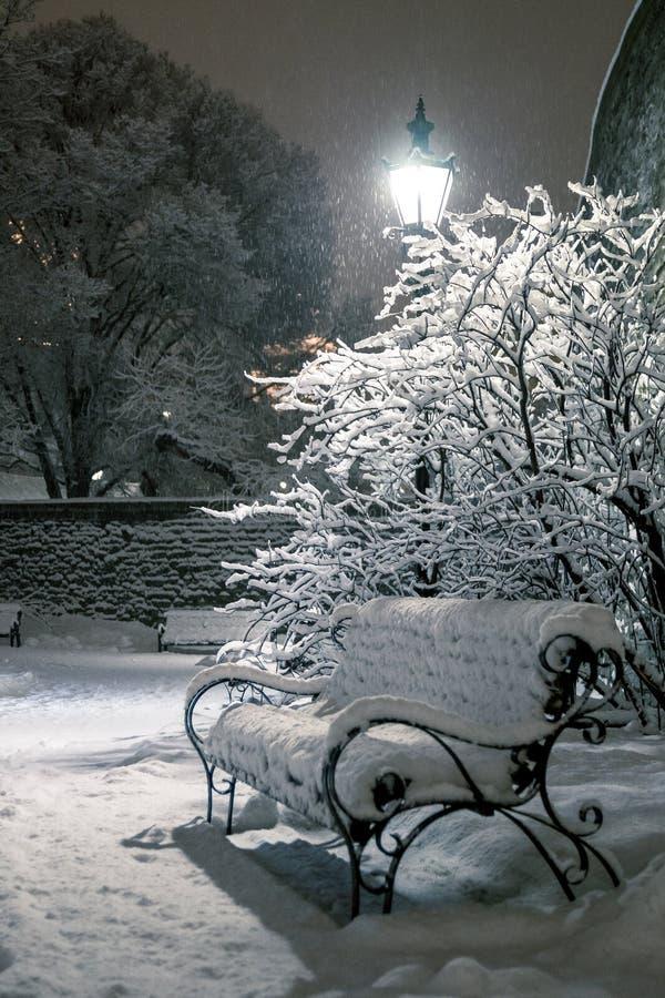 Волшебство зимы стоковое изображение rf
