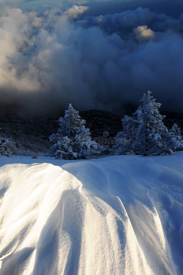 Волшебство зимы бесплатная иллюстрация