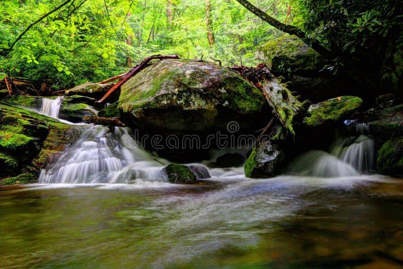 Воды реки Catawba в национальном лесе Pisgah стоковая фотография rf