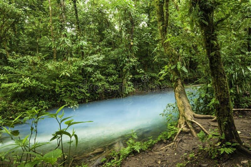 Воды Рио Celeste стоковая фотография