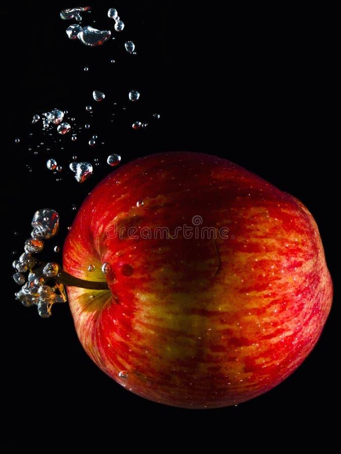 Водяное яблоко стоковые изображения rf
