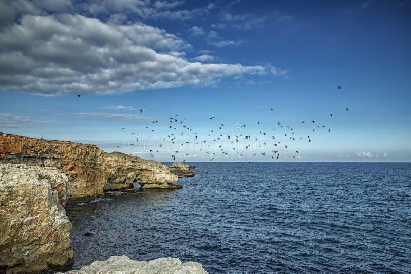 Впечатляющий ландшафт на скалах береговой линии стоковые фотографии rf