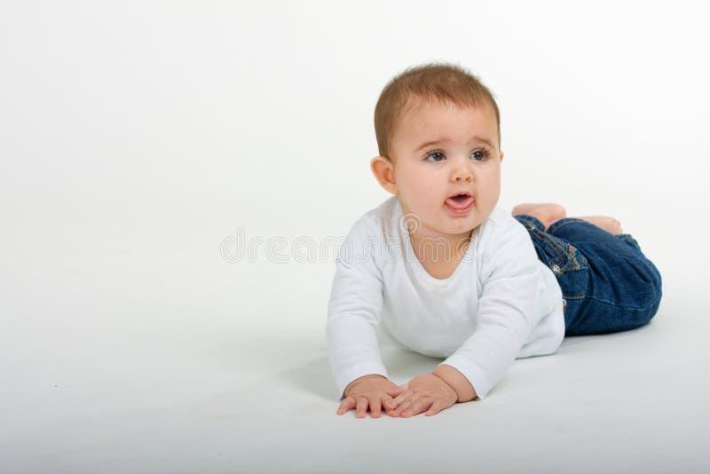 вползать 6 младенцев стоковые изображения
