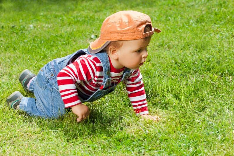 вползая малыш сада стоковое изображение rf