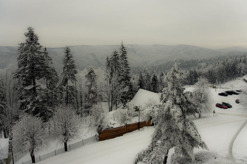 вполне счастлива те I если горы изображения благодарят использовано, то где зима а вы стоковые фото