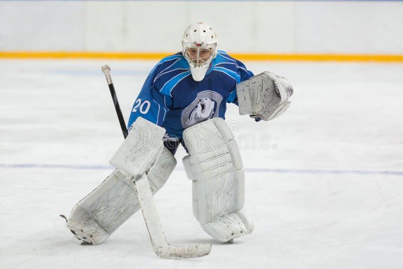 Вратарь хоккея готовый для того чтобы уловить шайбу стоковые изображения rf