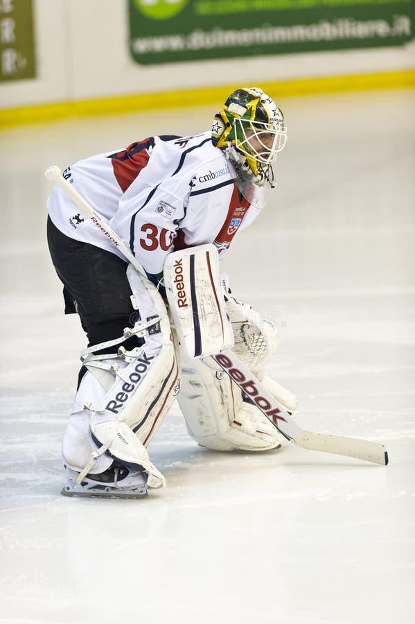 Вратарь хоккея на льде стоковые изображения