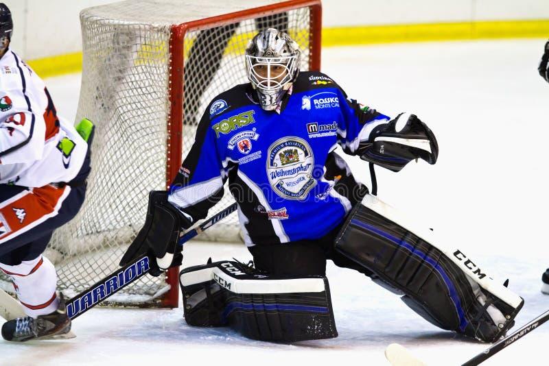 Вратарь хоккея на льде стоковые фотографии rf