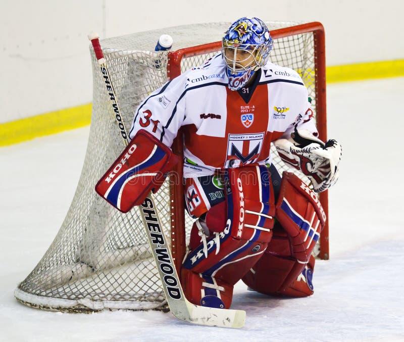 Вратарь хоккея на льде стоковая фотография