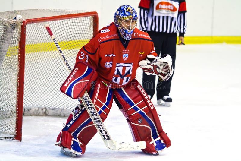 Вратарь хоккея на льде стоковое изображение