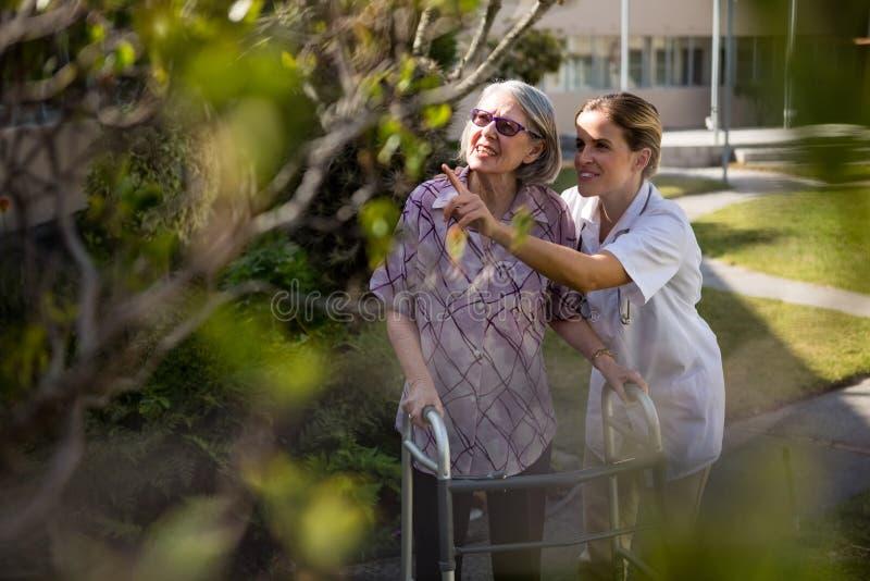 Врачуйте говорить к старшей женщине пока помогающ ей в идти стоковые фото