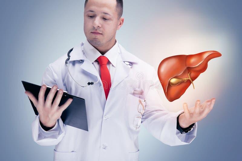 Врачуйте держать человеческие органы и таблетку на серой предпосылке Высокое разрешение стоковые фотографии rf