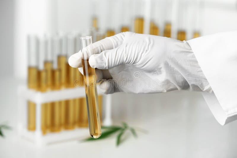 Исследование мочи на коноплю гидропоника марихуаны в домашних условиях