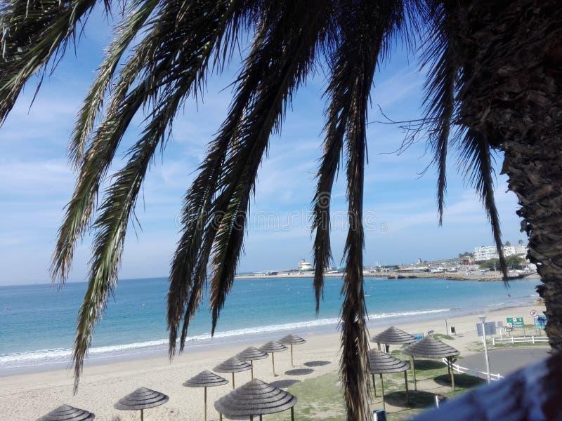 Времена пляжа стоковые изображения