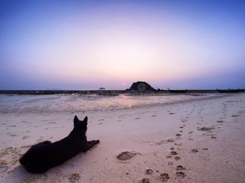 Время восхода солнца утра острова Lipe стоковые фото